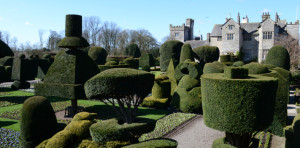 Topiary gardens at Levenshall