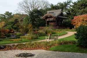 Japanese garden at Royal Botanic Gardens, Kew