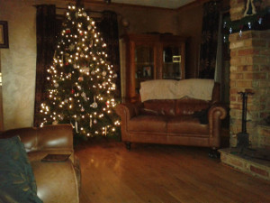 Christmas trees, Christmas, tree, lights, decorations, twinkle, winter, dark, history