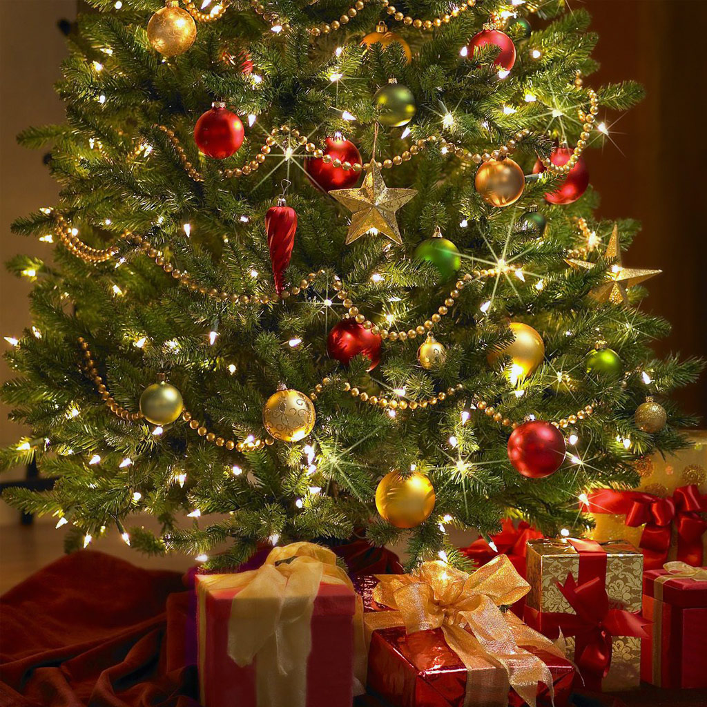 Why Do We Decorate Trees At Christmas - Christmas trees tree christmas fake real environment dilemma biodegradable