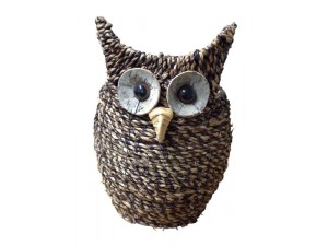 Owl, plant, pot, planter, container, Christmas, gift, Xmas