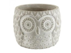 Owl, plant, pot, wise, Christmas, story, Xmas, gifts