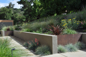 concrete, wall, slabs, path, planting, garden, landscaping