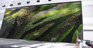 Green wall, gardens, design, 21st century, history