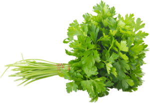 parsley, herb, garden, health, growing, plants, grow your own