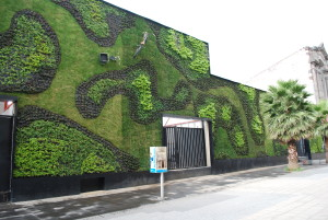 Green wall, art, growing, vertical, planting, wall, living, Mexico