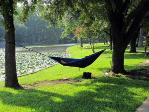 Hammock, shade, garden, trees, sit, relax, heat, hot, summer, shelter, sun