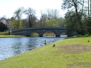English Garden, Audley End, Essex, garden, Capability Brown, landscape, English, day out, visit, summer, 2016