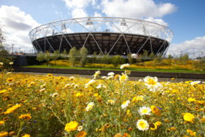 olympic park, planting scheme, plants, flowers, naturalistic, 2012, London