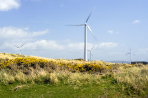 renewable energy, wind turbine, switch, energy, provider, saving, environment, green, power