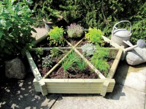 competition, competition time, win, herb wheel, spring competition, growing, herbs, compartments, grange, garden, grow your own