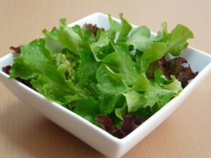 salad, cut and come again, growing, grow your own, leaves, lettuce, garden