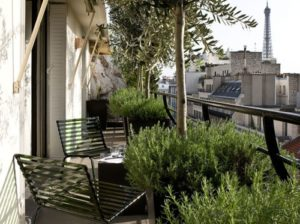 balcony, planting, gardening, olive tree, rosemary, herbs, gardening in a small space, balcony planting, greenery, plants