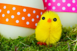 Easter egg hunt, chicks, easter, egg hunt, treasure hunt, games, garden, kids, children