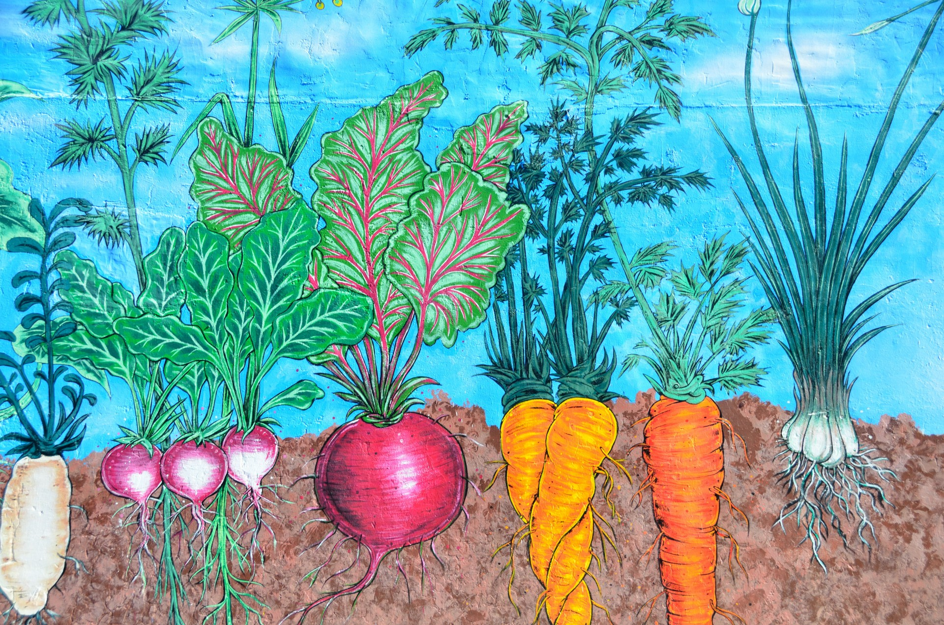 Vegetable garden art - Grow Your Own Vegetables Growing Gardening Carrots Courgettes Lettuce