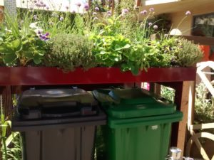 green roof, bin storage, feature, garden, gardening, bins, RHS Chelsea, Chelsea Flower Show, 2017,