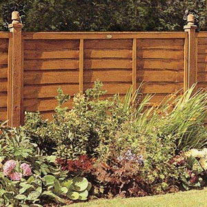 fence, fence panel, vertical, boundary, fencing, planting, garden, flowers, climbers, vertical,