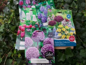 planting bulbs, tulips, allium, daffodils, crocus, hyacinth, autumn garden, spring flowering bulbs,