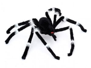 spider, halloween, 31 October, festival, witches, ghosts, webs, trick or treat,