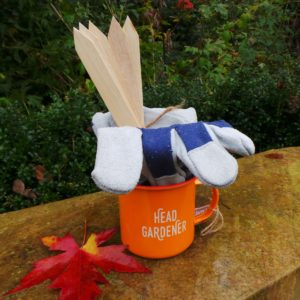 gardener's gift set, gardening gift set, gloves, mug, wooden plant labels, gifts for gardeners, perfectplants.co.uk,