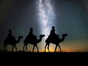 3 wise men, three wise men, camels, christmas, gifts, gifts for gardeners, christmas shopping, xmas, gardening,