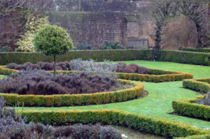 winter garden, garden, winter, outdoors, cold, health, mental health, colds, energy, exercise, moving,