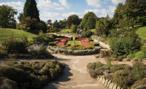 planting design, style of garden, park, garden, fashion, outdated, heathers, conifers,
