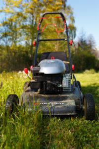lawn mowing, trim the lawn, cut the grass, front garden, first impressions, gardening, winter tasks,