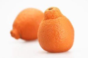 tangelo, tangerine, grapefruit, hybrid fruits, unusual fruit, fruit trees, plant an unusual tree, grow your own,