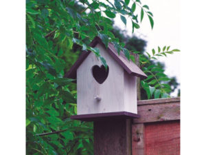 Valentine's, nest box, heart shaped, valentines day, valentines gift, bird box, for the one you love, living gift,