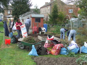 vegetables, grow your own, allotment, gardening, growing, community, community orchard,