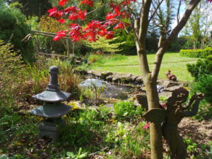 Garden, pond, garden pond, water in the garden, water feature, water, gardening, soothing, stress, health, therapy, perfectplants.co.uk,
