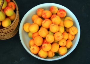 apricot, fruit tree, patio fruit, exotic fruit, patio tree, tree, grow your own, patio, gardening, garden,