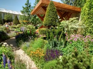 garden path, pathway, garden, gardening, garden design, planting, lawn, flowers, perfectplants.co.uk,