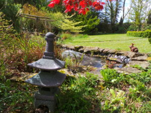 pond, water feature, shade, sunshine, sunny, hot, cool, air temperature, cooling, garden, perfectplants.co.uk,
