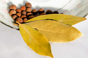 bay leaf, laurus nobilis, bay, cooking, kitchen, herb, aromatic, fly repellent, insect repelling, bite, insect bite, perfectplants.co.uk,
