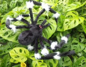 monkey mask, philodendron, cheese plant, monstera, halloween, plants are good for you, perfectplants.co.uk,