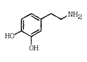 A diagram of the hormone dopamine which is called the feel good factor molecule.