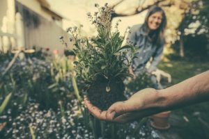 gardening outdoors is good for your health and can improve mental wellbeing,