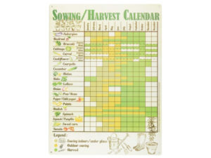 metal grow your own sowing and harvesting calendar for the shed door