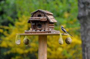 a bird table loaded with fat balls and bird seed attracts many different types of birds.