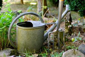 galvanised watering can and garden fork ready for use in the garden.