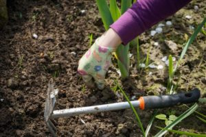 gardening using the no dig method means that double digging or single is no longer needed