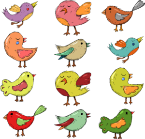a collection of cartoon like bird drawings