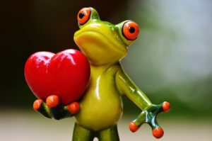 model of frog holding a heart