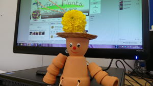 Frank the flowerpot man in front of a computer