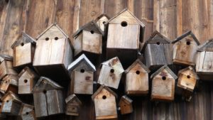 bird boxes made from recycled wood