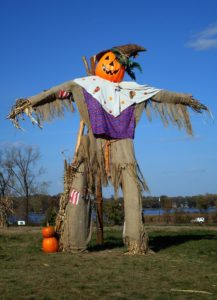 scarecrow to frighten off the birds