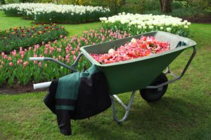 wheelbarrow made of plastic