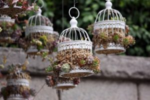 unusual hanging plant containers outdoors in a garden